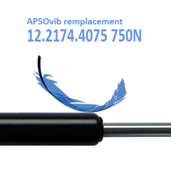 remplacement-apsovib-12